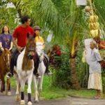 Bali Aktivitas dengan naik kuda di Bali