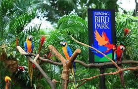 Harga Tiket Bali Bird Park