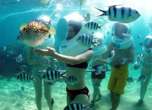 Bali SeaWalker Murah