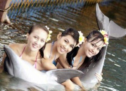 Bali Dolphin Atraction Lovina