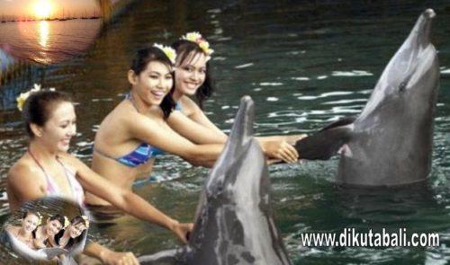 Enjoy dolphin lovina Bali