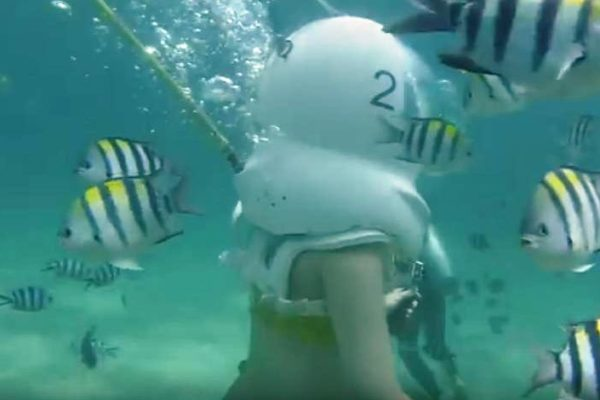 Seawalker Bali Tanjung Benoa Harga Murah
